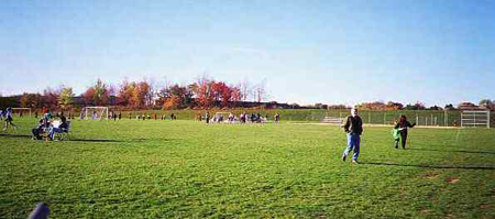 Lingle Park Field